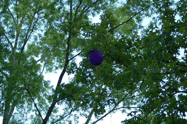 DSC_0160 balloon high in the trees